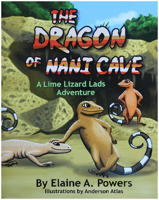 book cover illustration with two lizards
