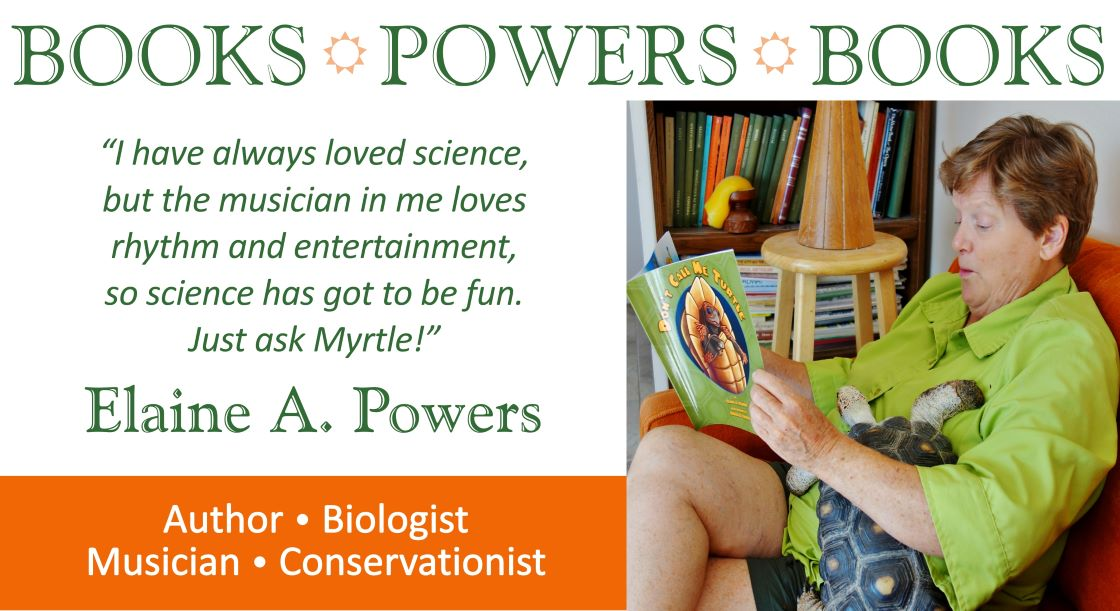 graphic for author elaine a powers