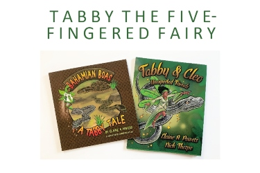 book covers tabby fairy