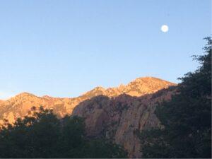 Full moon showing in daylight