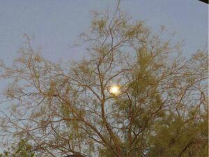 Full moon early rising
