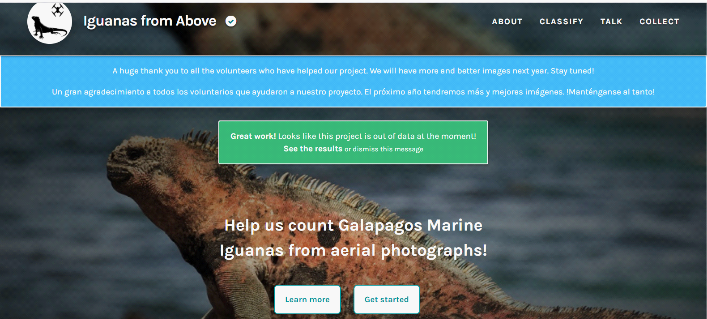 cropped image from Zooniverse website re: iguana study