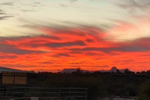 photo of red sunset in tucson az