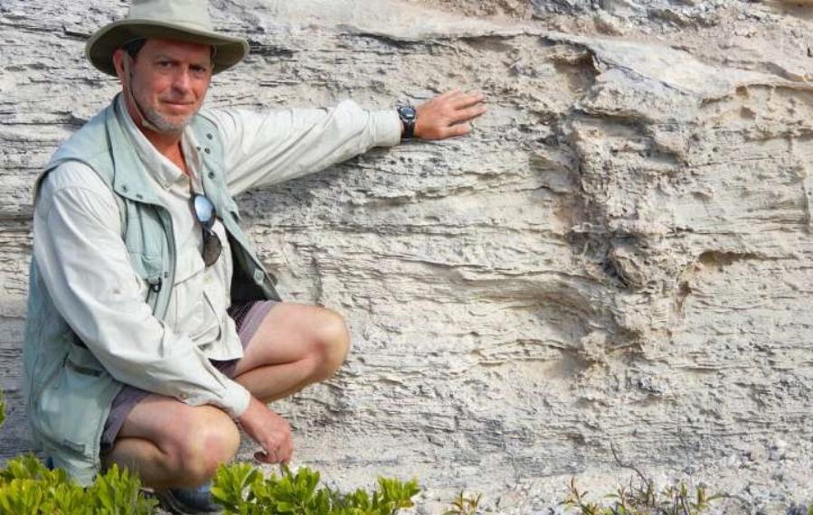 Fossil Iguana Burrow in The Bahamas?