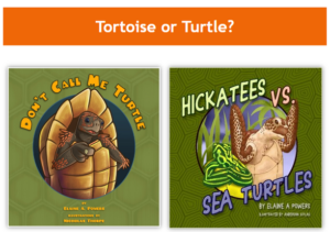 Two fun science books on tortoises and turtles