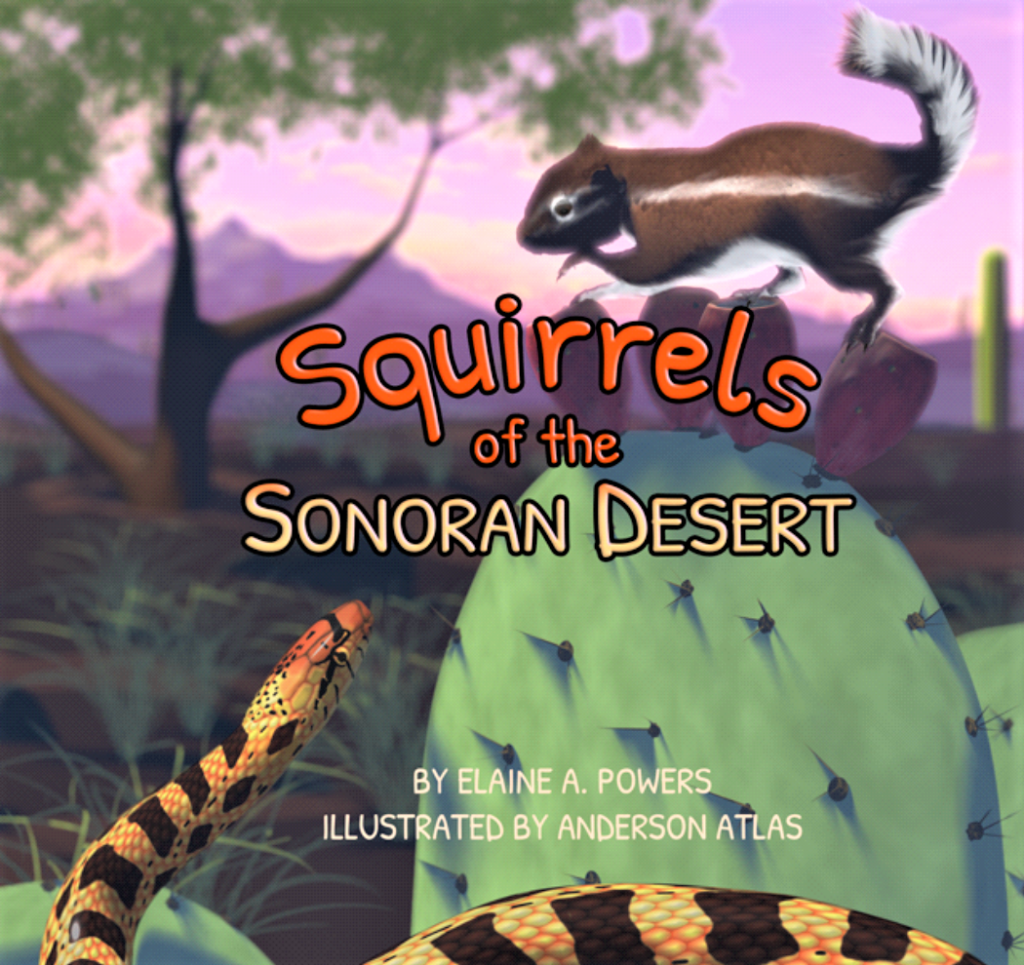 book cover for Squirrels of the Sonoran Desert