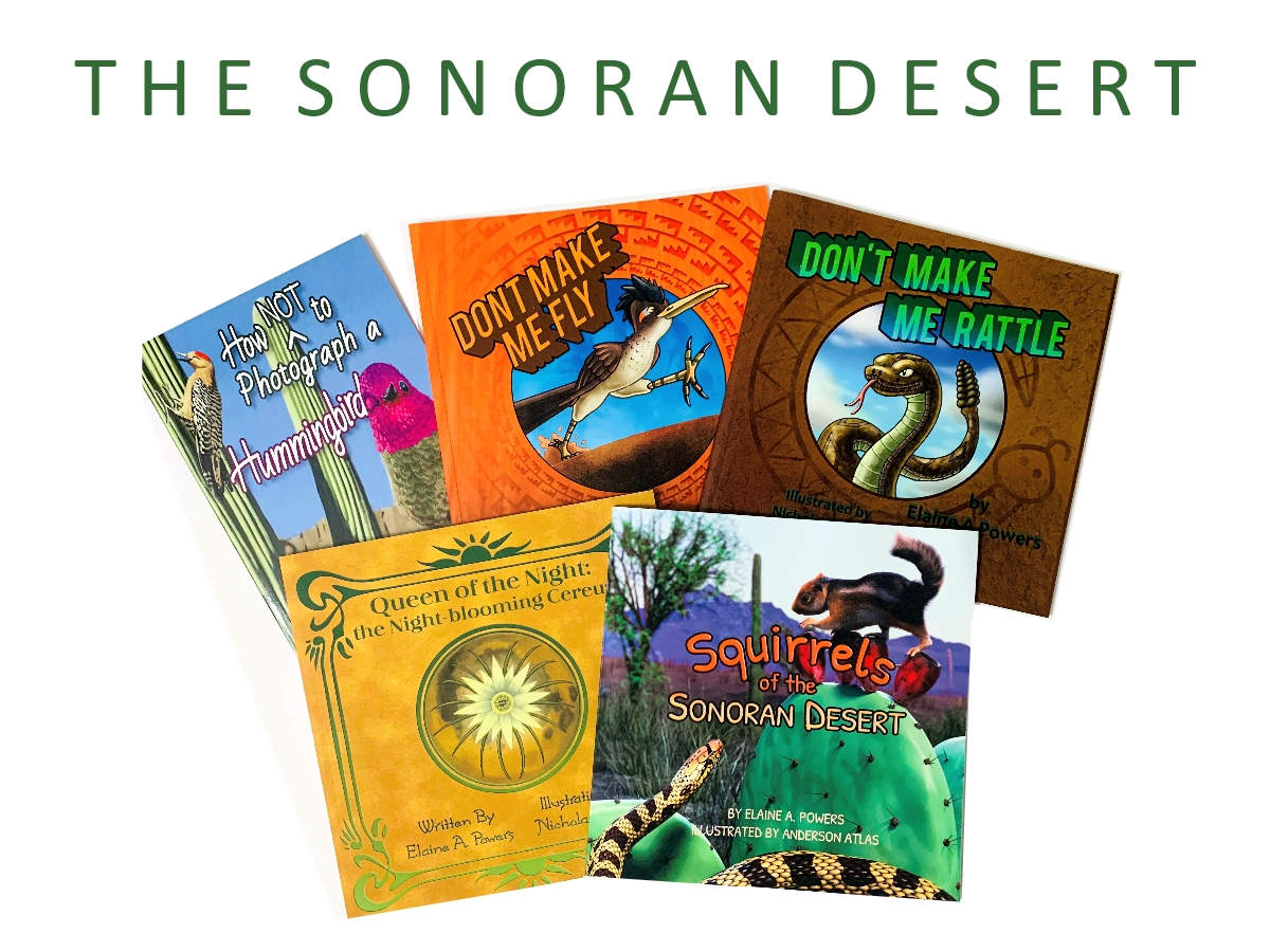 collage of sonoran desert book covers